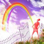 Tim de Groot - Rainbow